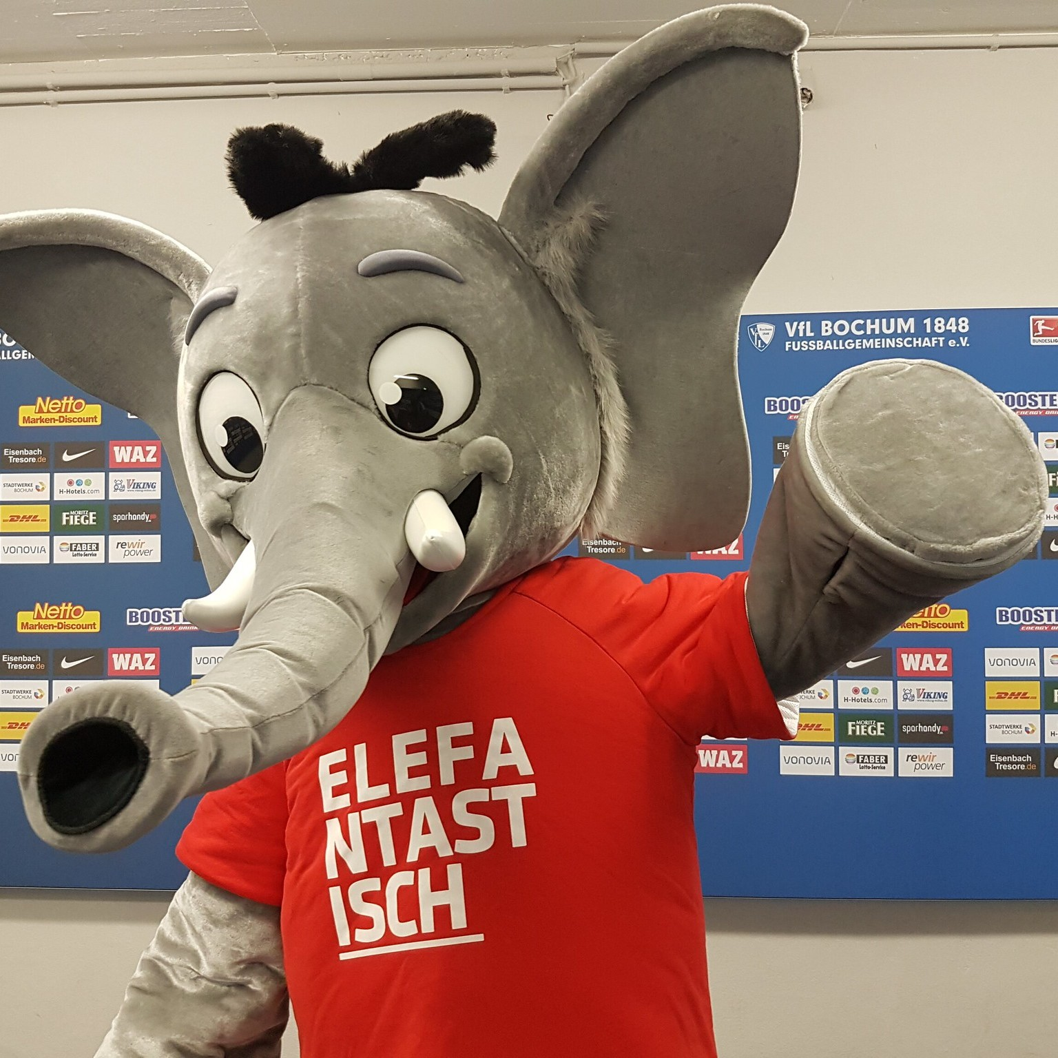 Bild: Elefant Hannibal